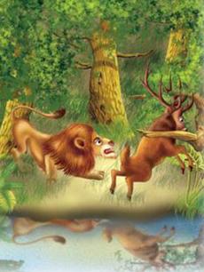 Cervo e leone