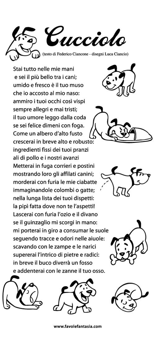Cucciolo_ Federico Ciancone