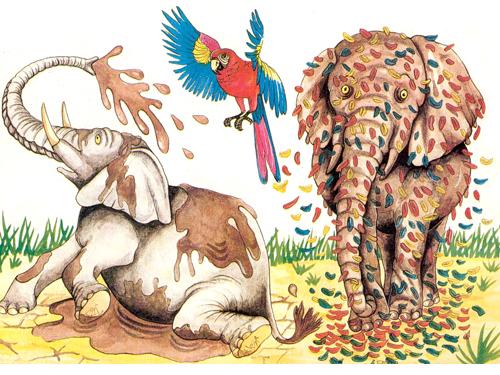 elefante_6
