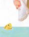 Il pesciolino d'oro