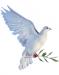 La leggenda della colomba Pasquale