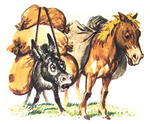 L'asino e il cavallo
