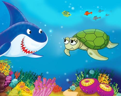 Lo squalo e la tartaruga