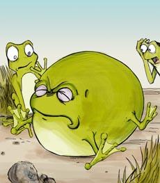 La rana e il Bue 2