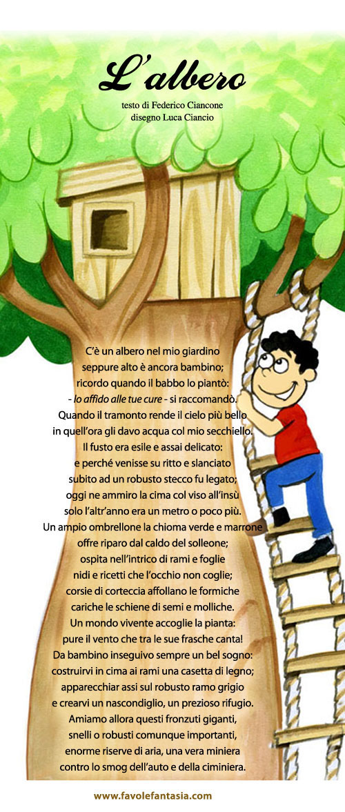 L'albero_Federico Ciancone