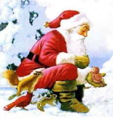 Il Natale di Cipì