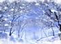 La leggenda del primo inverno