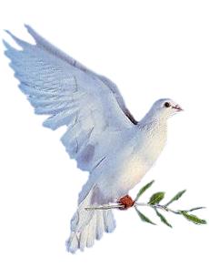 colomba di Pasqua