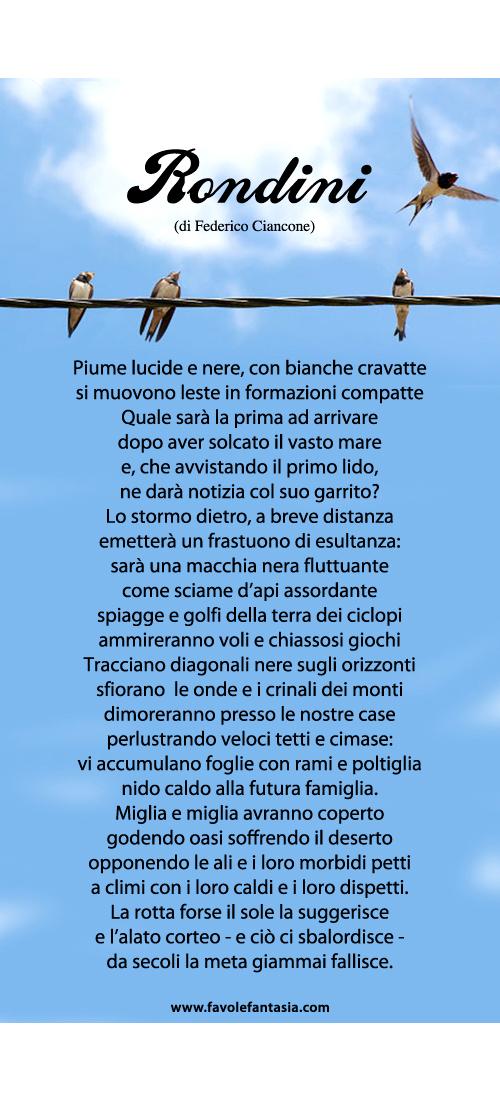 Rondini_Federico Ciancone