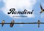 Rondini_favolefantasia.com
