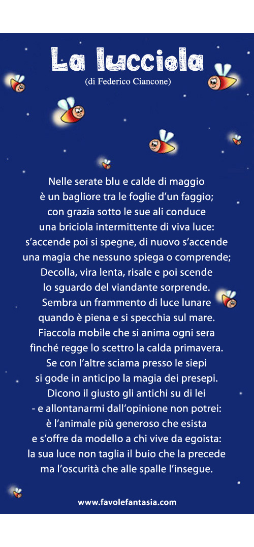 La lucciola_Federico Ciancone_