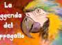 Leggenda del pappagallo_Monica Sorti