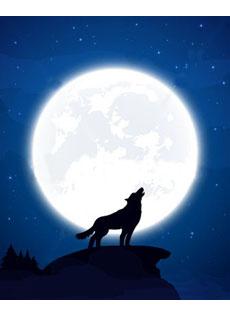 Leggenda Luna Piena 2