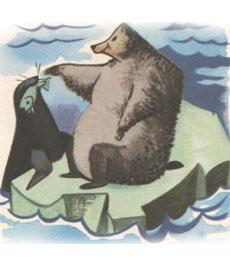 orso foca