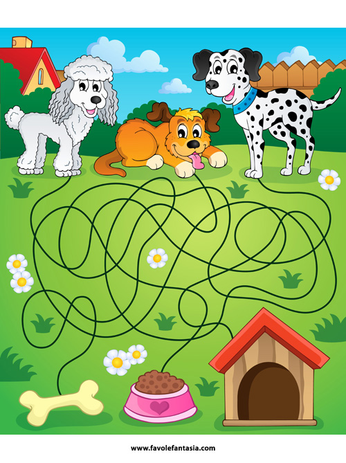Maze 14 with dogs