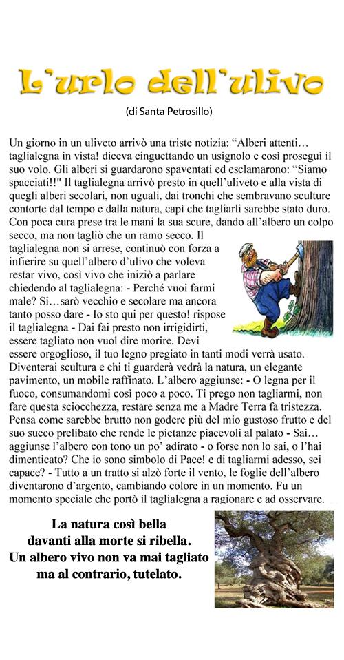 L'urlo dell'ulivo_Santa Petrosillo