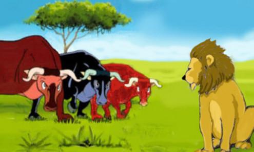 leone e tre buoi