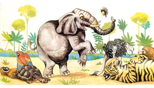elefante_10
