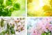 stagioni_colori 2