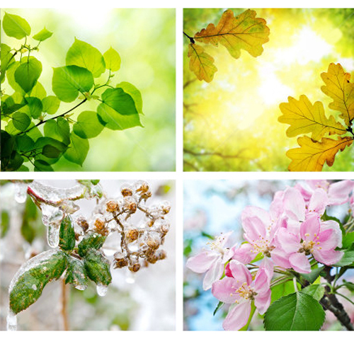 stagioni_colori