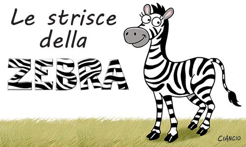 Zebra_Luca Ciancio