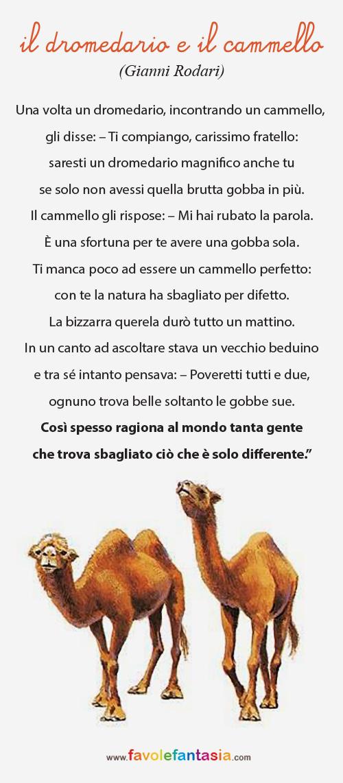 Il Dromedario e il cammello_Gianni Rodari